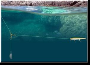 Deep water walleye fishing techniques tips for Best fishing line for walleye